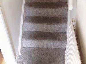 Picture of stairs before carpet cleaning by BCCB. This staircase carpet was in a very dirty rental property that had been vacated.